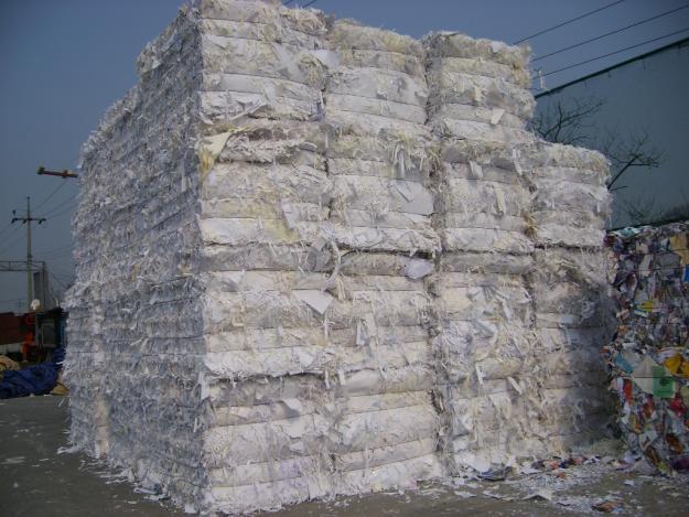 Thực hiện phân loại giấy phế liệu theo từng mức giá