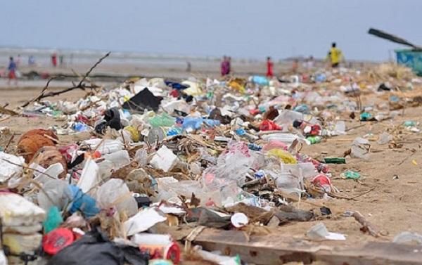 Tác hại khôn lường của túi ni lông và các sản phẩm nhựa dùng một lần