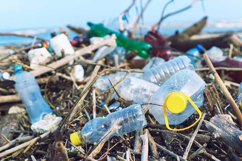 Tác hại khôn lường của rác thải nhựa đối với môi trường và cuộc sống